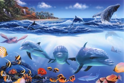 Island paradise mural steve sundram murals your way for Dolphin paradise wall mural